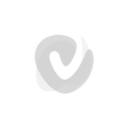 Van Schildt superdek mat exterieur muurverf p 10 liter